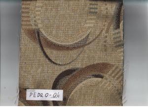 PEDRO 04
