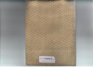 CAYENE 05